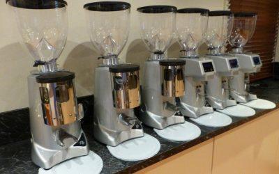 Fiorenzato Coffee Grinder Supplier